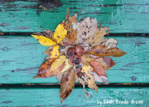 Autumn Equinox leaves