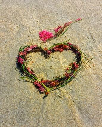 Seaweed.heart.leah.oviedo