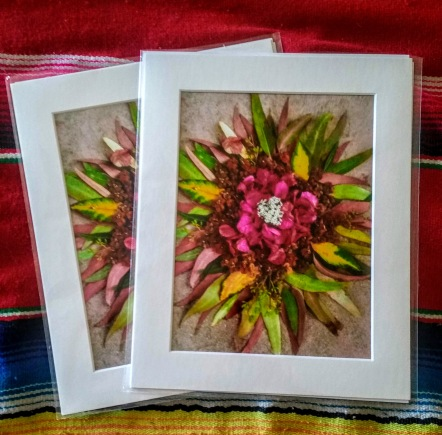 8x10 matted art prints of my nature art.